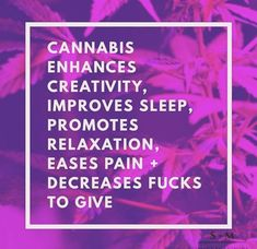 Mz Stoned (@mzstoned) | Twitter Weed Quotes, Ptsd, Cannabis, Twitter Sign Up, Make It Yourself, Shit Happens, Stone, Rock, Rocks