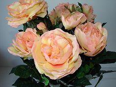 Blumenstrauß Rosen H. Andreas 63cm hoch Rosenbusch Englisch Gelb