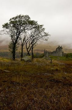 To Kilchurn Castle, Loch Awe