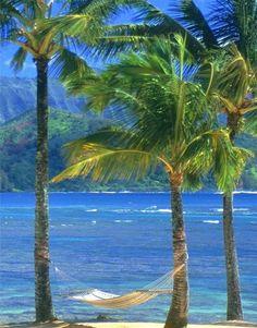 Insanely Beautiful Kauai Beach – Hawaii
