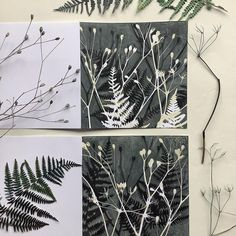 """Jennifer Douglas on Instagram: """"Winter Gelli cards! Keeping it simple with these prints, a great way to create designs easily from nature. Just look for plant shapes in…"""""""