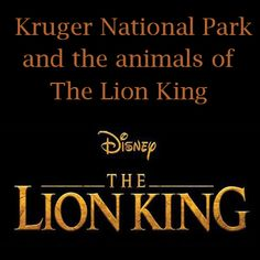 Find out what the LION KING and Kruger National Park has in common...Bush News Newsletter SUBSCRIBE NOW - Lion Roar Safaris Kruger Park Kruger National Park Safari, National Parks, Biomes, African Safari, Trip Advisor, Lion, Social Media, News, Leo