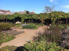 Medieval Garden at Bazoges-en-Pareds