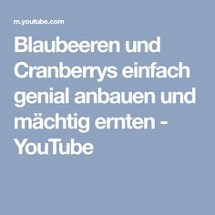Blaubeeren und Cranberrys einfach genial anbauen und mächtig ernten - YouTube
