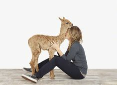 A CUP OF JO: Q with animal photographer Sharon Montrose » What a fun idea for a family photo shoot.