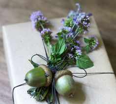 adorn-gift-with-a-bunch-of-mint-flowers-acorns