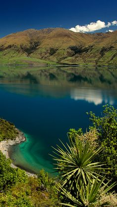 Lake Wanaka, Otago Region - NZ