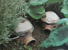 Diy toad house architectural designs diy toad house google search gardens pinterest sk publicscrutiny Gallery