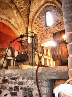 Chateau de Palayson. #sun #seasnowsun #tourisme #tourism #france #pacatourism #pacatourisme #PACA #provencal #tourismpaca #tourismepaca #vin #wine #oenotourisme #vitivinicole #vigne #raisins #grapes #vineyards #cave #chateau #palayson