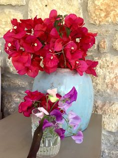 Pots with sweat peas and boucamvilia