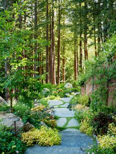 Green Roof and Landscape Architecture - Jori Hook  The clients for the Mill Valley Cabins wished to add some accessory structures to their existing hillside ...