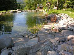 swimming pond installation.JPG (1500×1125)