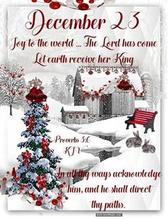 Christmas Bible Verses, Merry Christmas Quotes, Christmas Jesus, Meaning Of Christmas, Christmas Blessings, Christmas Messages, Christian Christmas, Christmas Countdown, Christmas Wishes