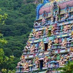 The Hindu Temple in Seychelles. #seychelles #island #hindu #temple #travel #explore #instatravel #instago #igtravel #travelphotography #instago #instavisit #instaholiday #holidayapp #countdownapp #readysetholiday #readysetholidayapp
