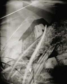 'Pinhole No. 28' - Birdhouse in the Garden Original black and white pinhole photograph captured on large format film.