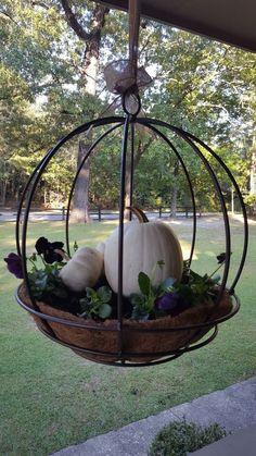 Pumpkins in hanging planter