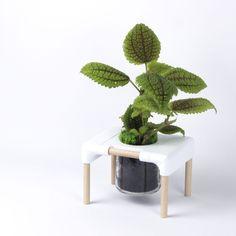 Design, Upcycling et Impression Impression 3d, Hydroponic Growing, Hydroponics, Pots, 3 D, Upcycle, Vase, Design, Furniture