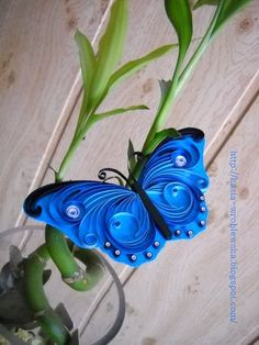 butterflies.  Love how this is attached to a real plant!