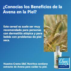 Los beneficios de la Avena para todo el organismo y, sobre todo, para la piel son numerosos. Conoce más como cuidar tu piel con Clyesimport