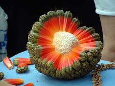 Strange fruit of Micronesia . The Hala Aka Puhala tree fruit. Strange Fruit, Weird Fruit, Fruit And Veg, Fruits And Vegetables, Fruit Fruit, Fruit Diet, Photo Fruit, Tree Seeds, Exotic Food