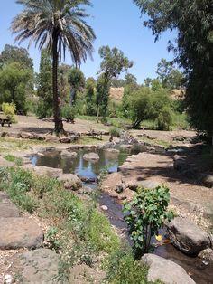 Jordan River Park . Galilee Israel