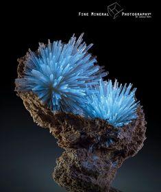 Fantastic fluorescence: aragonite sprays in clay from Pantoja, Toledo, Castile-La Mancha, Spain. Cool Rocks, Beautiful Rocks, Minerals And Gemstones, Rocks And Minerals, Natural Crystals, Stones And Crystals, Gem Stones, Aerosoles, Rock Collection