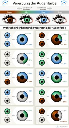 Dein Freund möchte dir einreden, dass du blau-graue Augen hast, dabei bist du d. Your friend wants to convince you that you have blue-gray eyes, are you sure that they are green? Here you can find o Eye Color Chart Genetics, Baby Eye Color Chart, Eye Facts, Eye Color Facts, Gray Eyes, Science And Nature, Drawing Tips, Beautiful Eyes, Art Reference