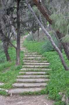 Steps at Lycabettus Hill, Athens, Greece