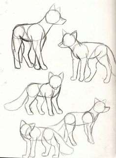 40 Free & Easy Animal Sketch drawing information and .- 40 Free & Easy Animal Sketch Zeichnen von Informationen und Ideen 40 Free & Easy Animal Sketch Drawing information and ideas - Fox Drawing, Furry Drawing, Drawing Base, Sketch Drawing, Drawing Ideas, Drawing Tips, Drawing Animals, Drawing Techniques, Dog Drawing Tutorial