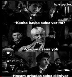 Harry Potter Pin, Fake Photo, Tom Felton, Draco Malfoy, Ravenclaw, Merlin, Hogwarts, Film, Funny Pictures