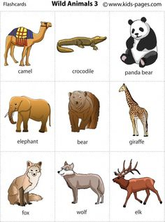 3. Wild animals printable for poster or game cards
