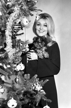 Sharon Tate, Christmas 1968ish!