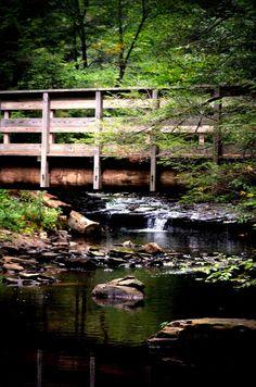 Fine Art Nature Photography, Pennsylvania Creek Photo, Bridge Print, Cabin…