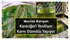 Bu Karışımla Göbeği Dümdüz Yapın, Karaciğeri Yenileyin – Nefis Lezzetler Sitesi Fruit Drinks, Healthy Drinks, Flatten Belly, Health And Wellness, Health Fitness, Detox Recipes, Cleanser, Letter Board, Smoothie