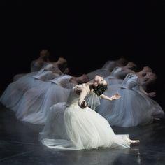 lasylphidedubolchoi:  Giselle  Photo by Sasha Gouliaev