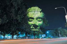 Photographer, Clement Briend made some beautiful projections onto trees in Cambodia that an eerie effect on the local  environs...