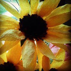 A paper sunflower