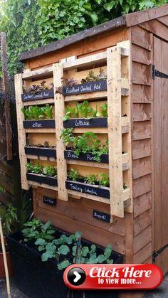 Vertikale Garten mit Palette gemacht