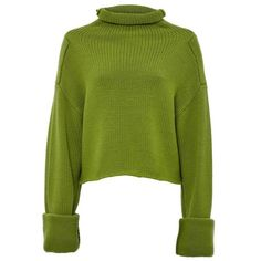 Amanda Wakeley Bonsai Green Cropped Jumper (18 015 UAH) ❤ liked on Polyvore featuring tops, sweaters, green, knitwear, turtleneck, chunky knit sweater, high neckline crop top, green sweater, chunky knit turtleneck sweater and high neck sweater
