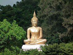 Đạo Bụt Nguyên Thủy (Đạo Phật Nguyên Thủy): Kinh Tăng Chi Bộ - Kham nhẫn