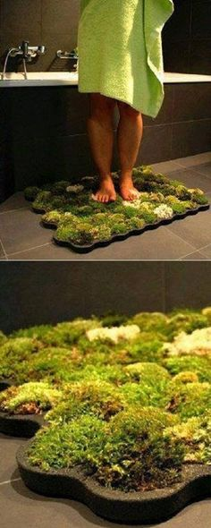 DIY natural moss mat that lives off of shower water and adds greenery to any bathroom while being environmentally friendly