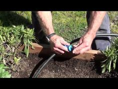 "Pocket Punch Drip Irrigation Punch (video length 0:27) - The Pocket Punch has 3 unique uses making it a must have for drip systems. It will punch holes into 1/2"" drip irrigation tubing and will also remove emitters from tubing with ease. The insert tool will hold transfer barbs or certain emitters to make installation easier."