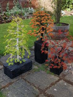 3 of my Garden sculptures together, earlier this year. Garden Sculptures, Sidewalk, Wire, Create, Plants, Image, Design, Flora, Design Comics
