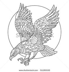 Eagle Bird Coloring Book For Adults Vector Illustration Anti Stress Adult Tattoo Stencil Zentangle Style Black And White Lines
