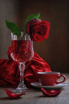 Uploaded by Mohamed Abo El Yazid. Find images and videos about flowers, red and rose on We Heart It - the app to get lost in what you love. Single Red Rose, Raindrops And Roses, Beautiful Red Roses, Simply Red, Rose Cottage, Red Aesthetic, Flower Wallpaper, Shades Of Red, My Favorite Color