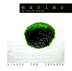 Marimo by Clo'eT design : shoponline www.cloet.it