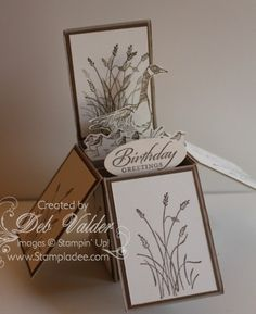 NEW Z FOLD CARD IN A BOX with Deb Valder by djlab - Cards and Paper Crafts at Splitcoaststampers
