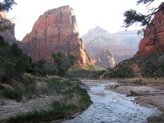 Utah - Zion Canyon...one of my favorite national parks. Can't wait to return!