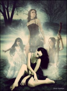 so very beautiful. house of night-inspired, her three inner spirts Night Novel, House Of Night, Paranormal Romance Books, Earth Spirit, Finishing School, How To Be Likeable, Book Fandoms, Gothic Beauty, Great Books