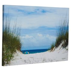 Ocean Path Photo Graphic Print on Canvas